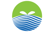 Mayfly Outdoors